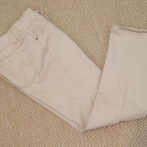 CAbi Jeans  Size 14